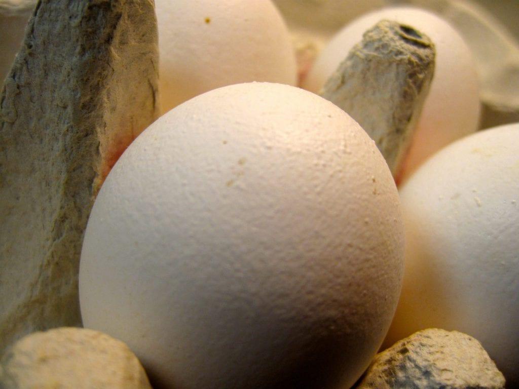 5:2, dagens middag, bønner, skinke, æg