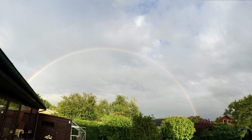 regnbue, natur, naturfænomen, haven, have